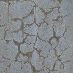 concrete shrink